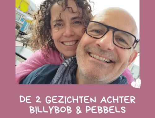 Verhaal van BillyBob en Pebbels